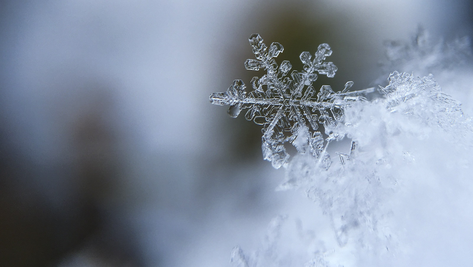 Cuisine/restaurant flocon neige