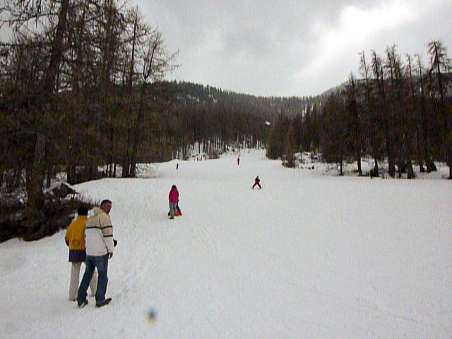 Skiing ski alpin 2