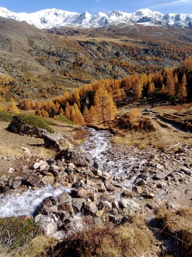 Home randonne ruisseau automne montagne
