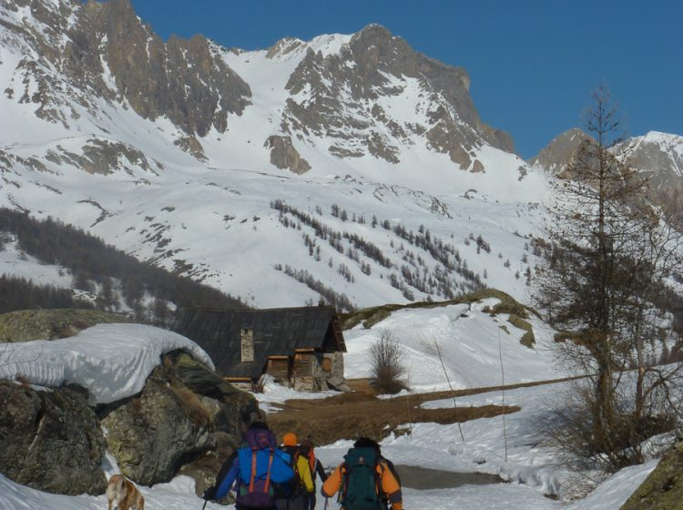 Skiing ski rando 2