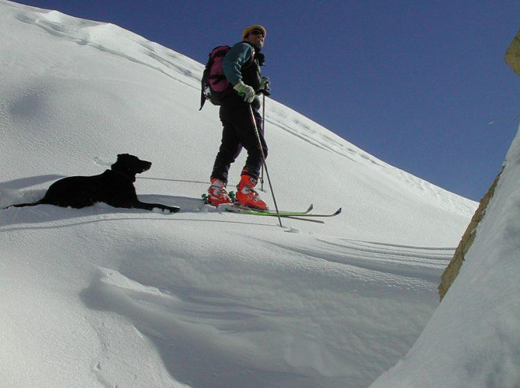 Skiing ski rando 3