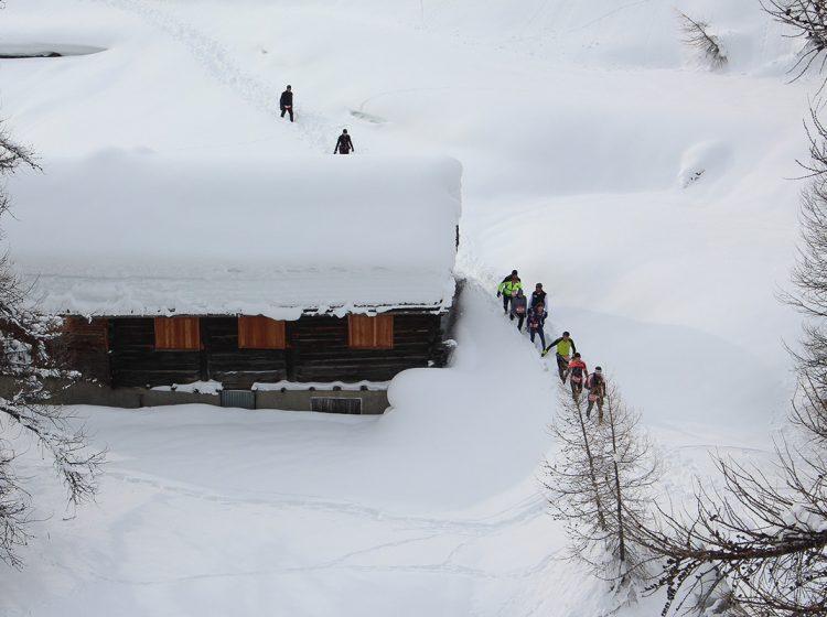 Trail Running trail 3